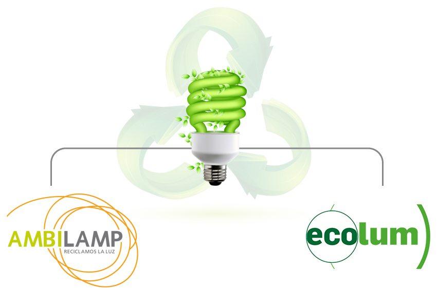 ecolum-ambilamp-reciclar